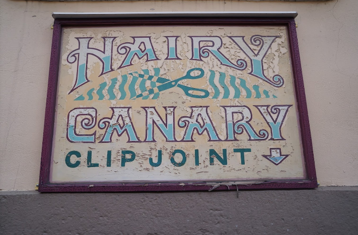 Hairy canary clip joint